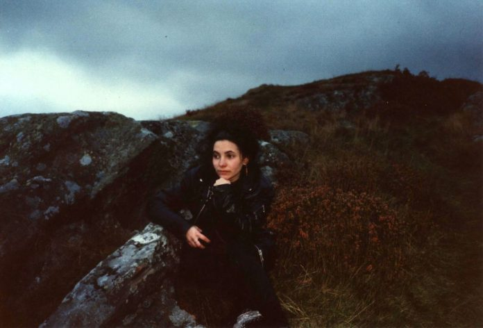 Rosa auf einem Felsen in den schottischen Highlands