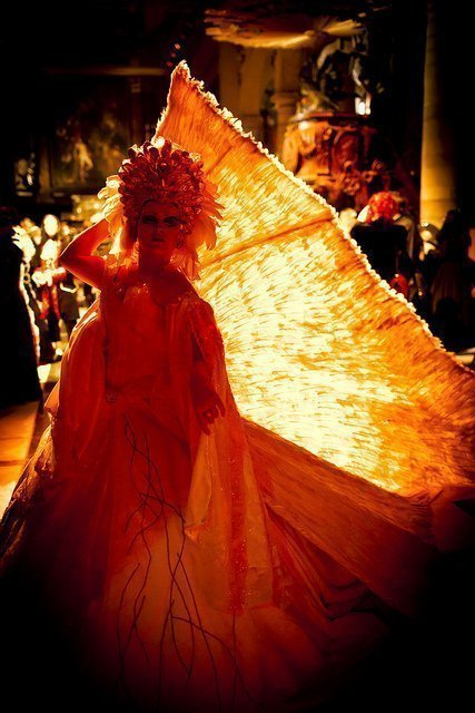 Gala Nocturna - Red Swan