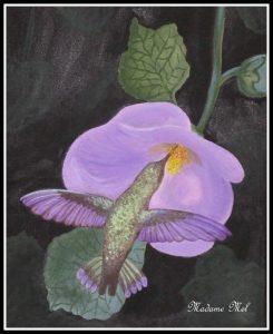 Madame Mel - Kolibri