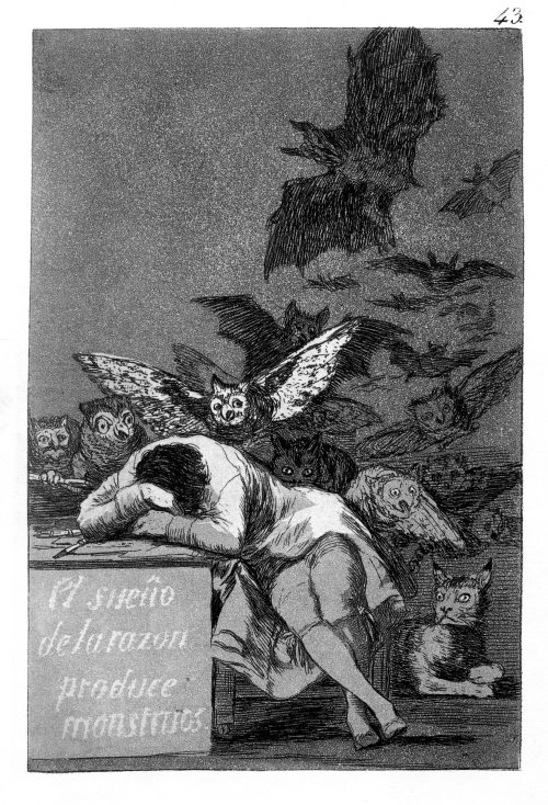 Goya - Vernunft