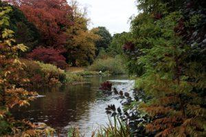 Kew Gardens - Oktober 2013 (2)