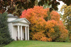 Kew Gardens - Oktober 2013 (8)