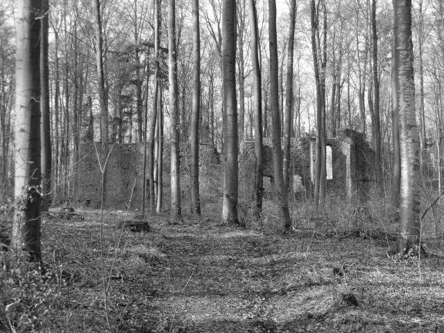 Liber Occulti: Das verwunschene Kloster am Uhlberg