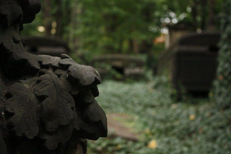 Gräber im Dornröschenschlaf – Eliasfriedhof Dresden