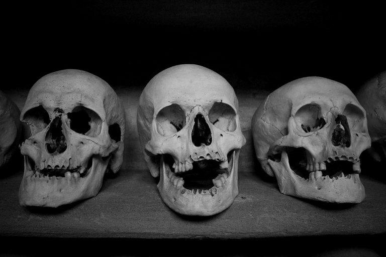 Radio: Kult um den Totenkopf – Der Tod ist unser Gefährte