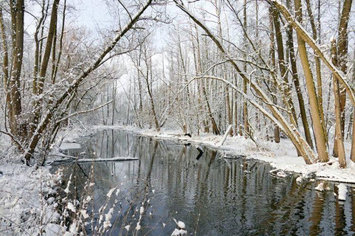 Tegeler Fließ im Winter