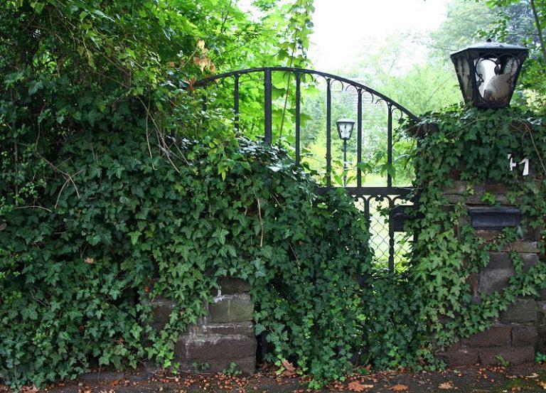 Gothic Friday Juli: Ein Leben in einer Stadt ist für mich nicht mehr denkbar. (GM)