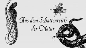 Aus dem Schattenreich der Natur