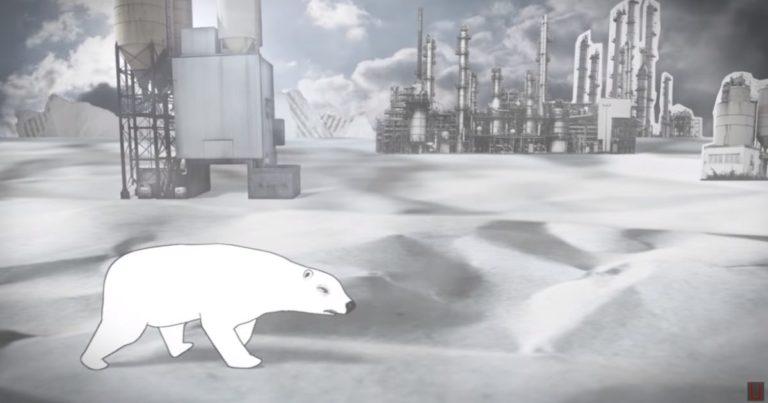 Grauzones Eisbär wird bald 40 – Ob er immer noch nicht weinen muss?